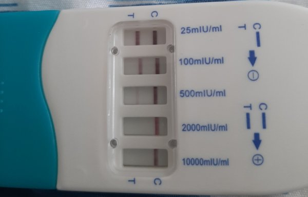 Положительный тест на беременность. 34 день цикла