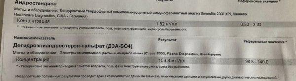 036C2568-90C6-4DC8-B66F-E2E5813955C5.jpeg