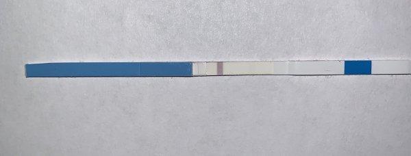 433EEB9B-4296-4BC6-80DD-9B81D1020041.jpeg