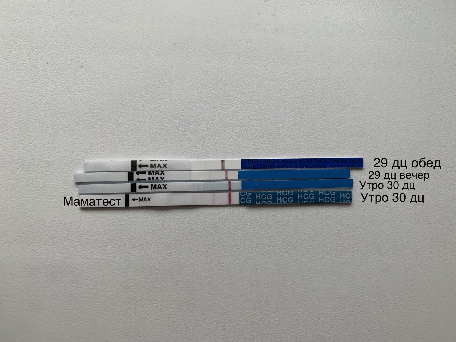E69DC609-42F7-4CDE-8703-97930F472D82.jpeg
