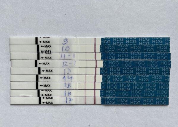 DB8F68DC-0653-4C81-B446-6912E0E4E08F.jpeg