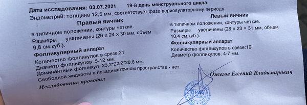 D9A8CD83-454C-4A69-AC36-4019318877CF.jpeg